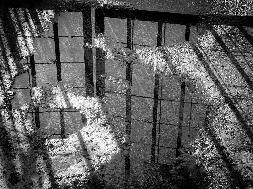 black-and-white.jpg
