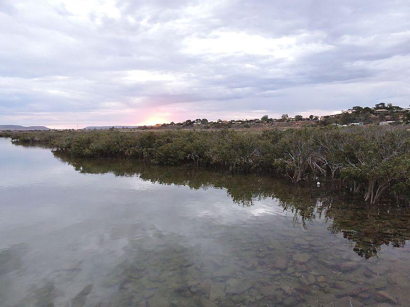 Port_Augusta_Nature.jpg