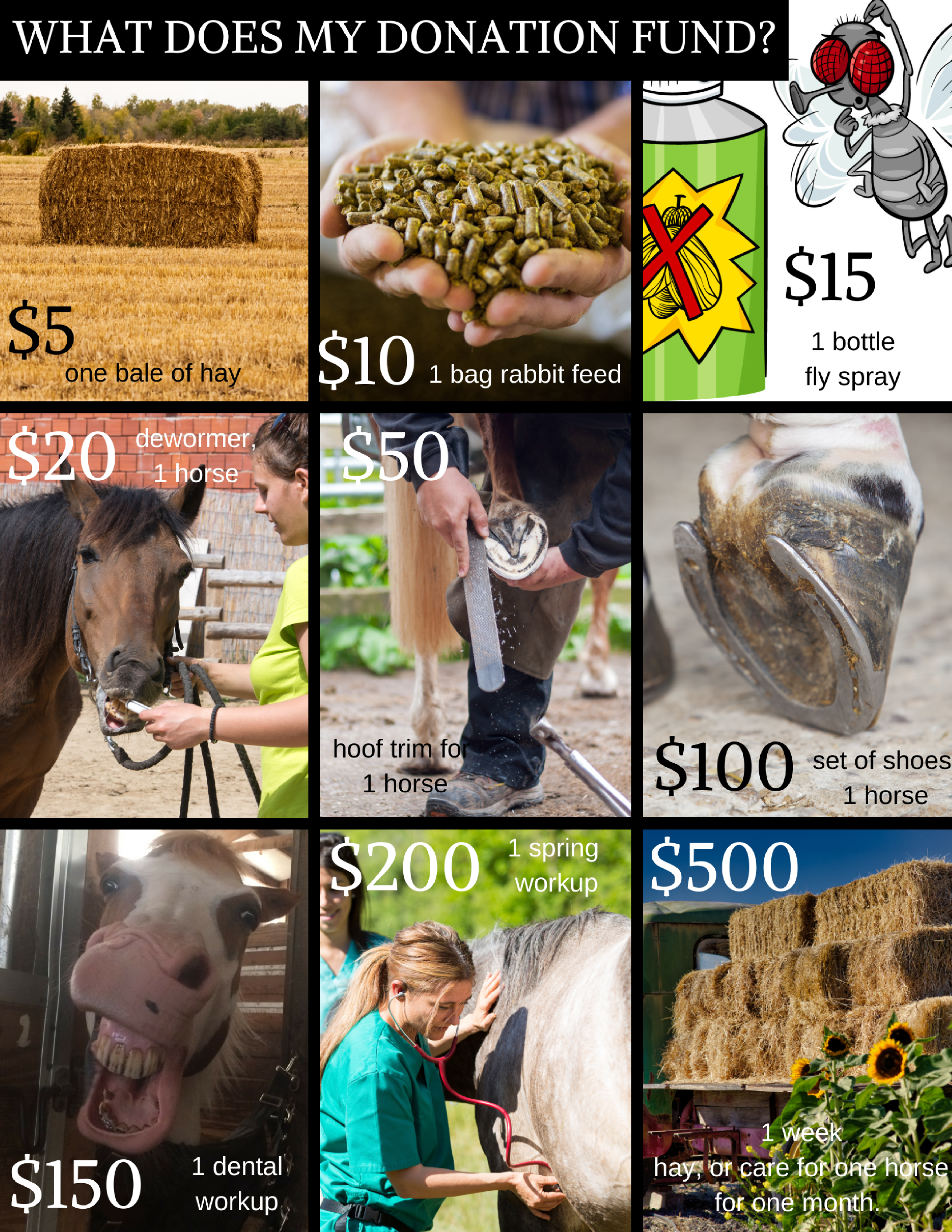 $5-2.png