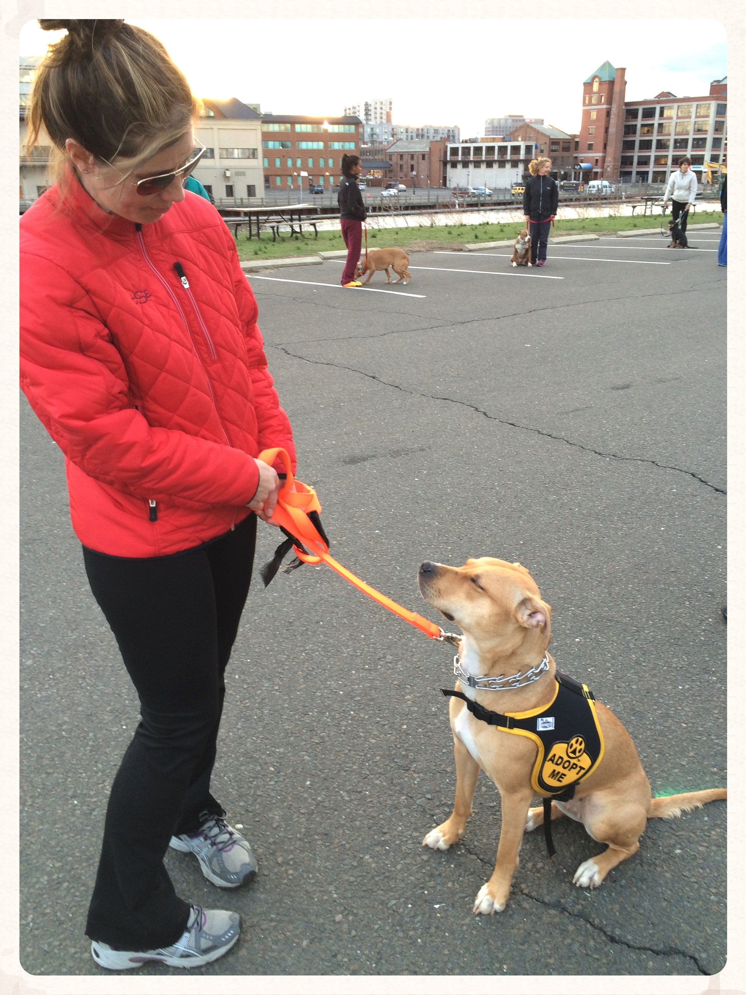 4.23.14 dog training class (5).jpg