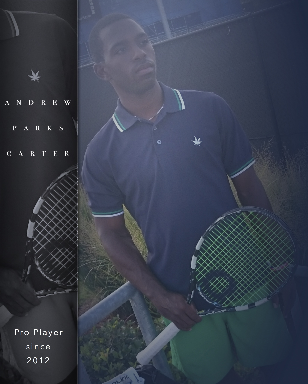 APC since pro player 2012.jpg
