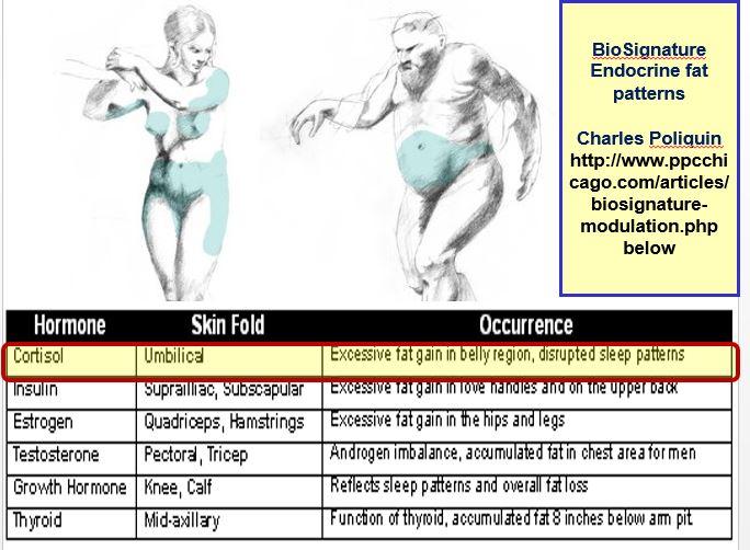 Endocrine fat patterns