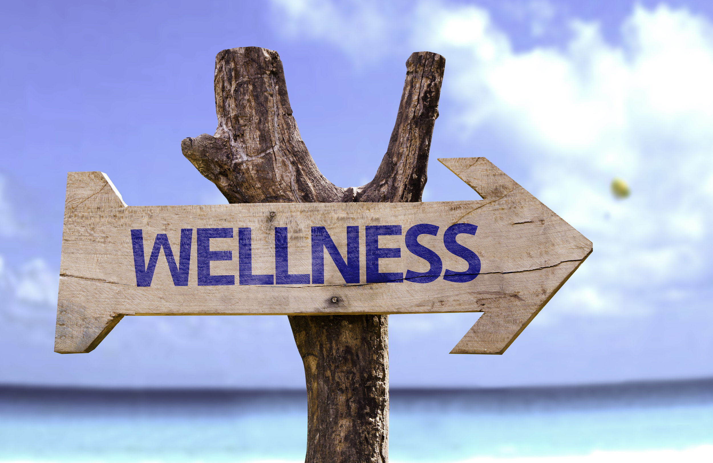 wellness arrow.jpg