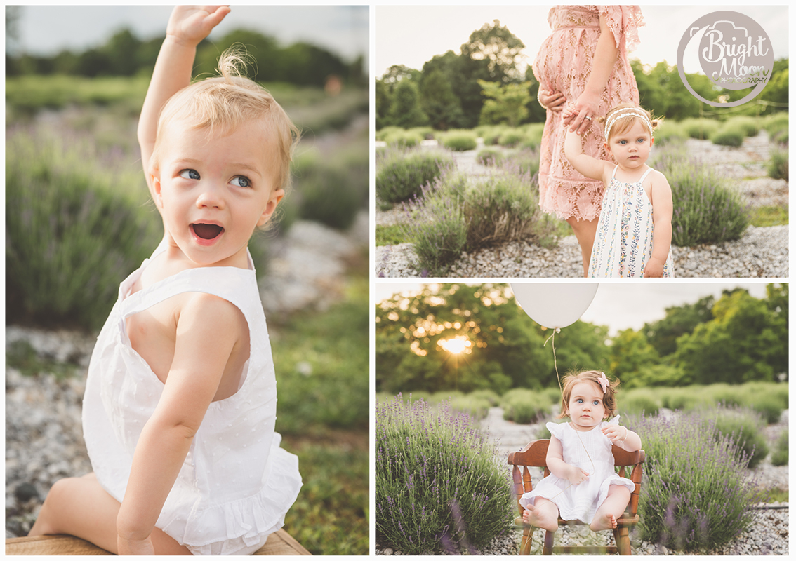 Bright Moon Photography | Southern Hills Lavender | Greenville Photographer