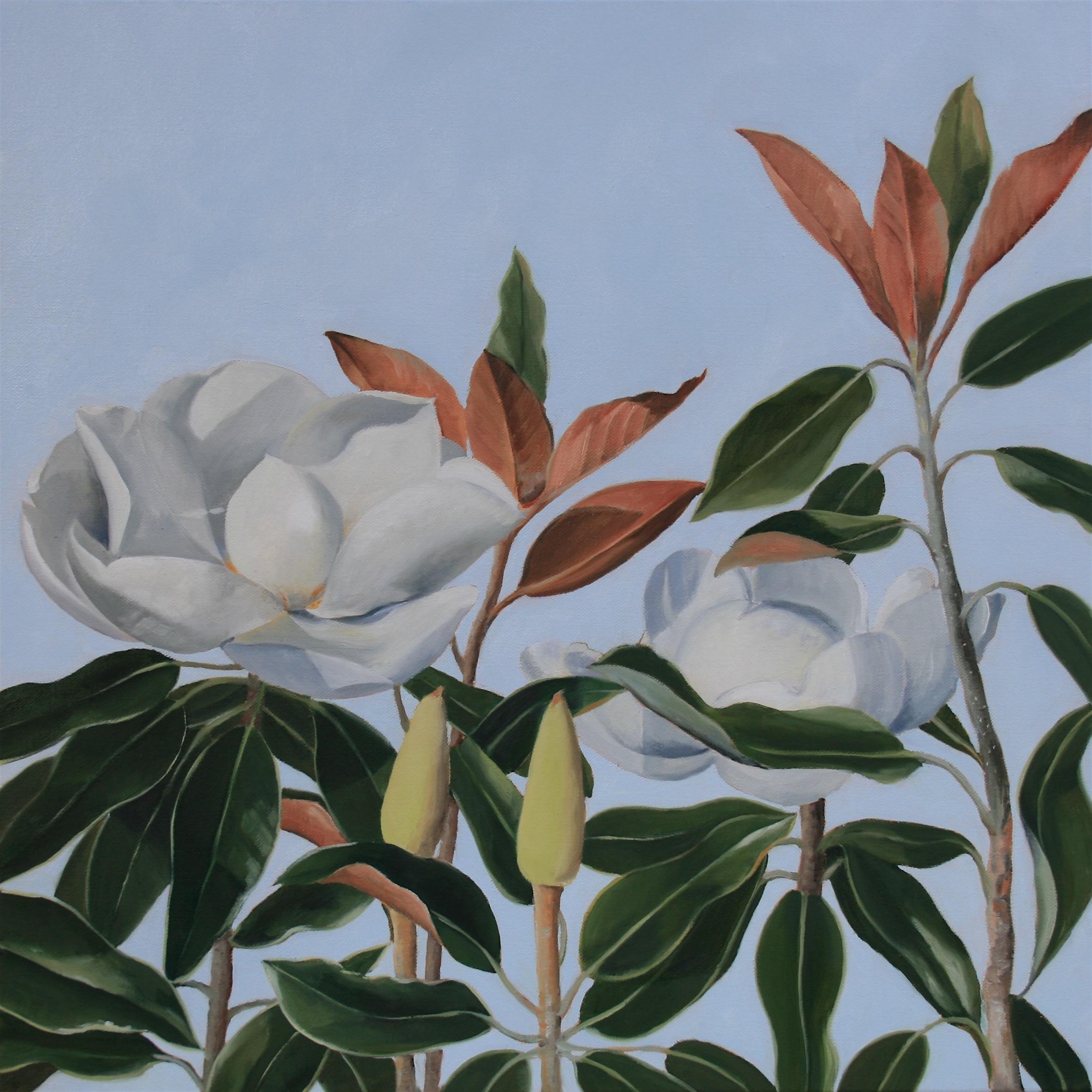 Flowering Magnolia - SOLD