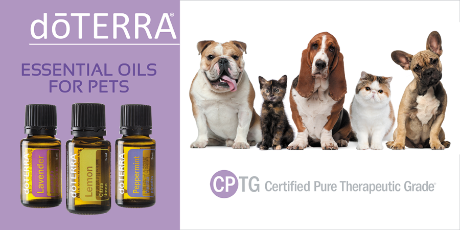 doterra-essential-oils-for-pets-banners.png