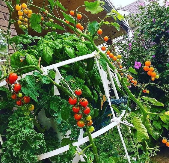 Home_Garden_DIY_1.jpg