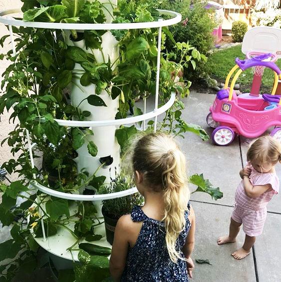 Home_Garden_DIY_2.jpg