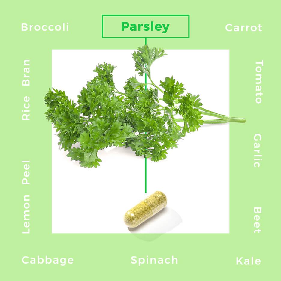 Plant_Based_Nutrition_Capsules_3_.jpg