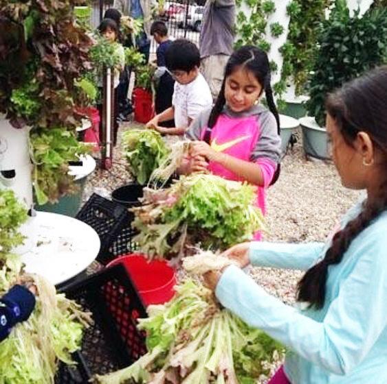 Vertical_Tower_Farms_Garden_Shop_2.jpg