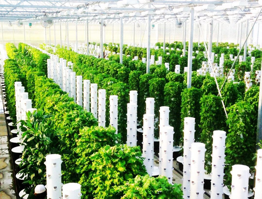 Vertical_Tower_Farms_Garden_Shop_5.jpg