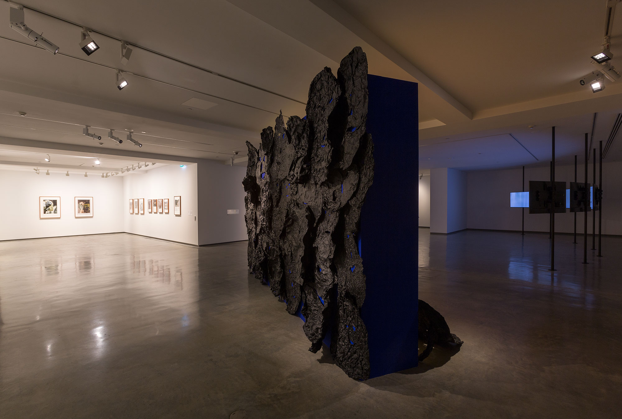 installation view, Museum of Contemporary Art Australia