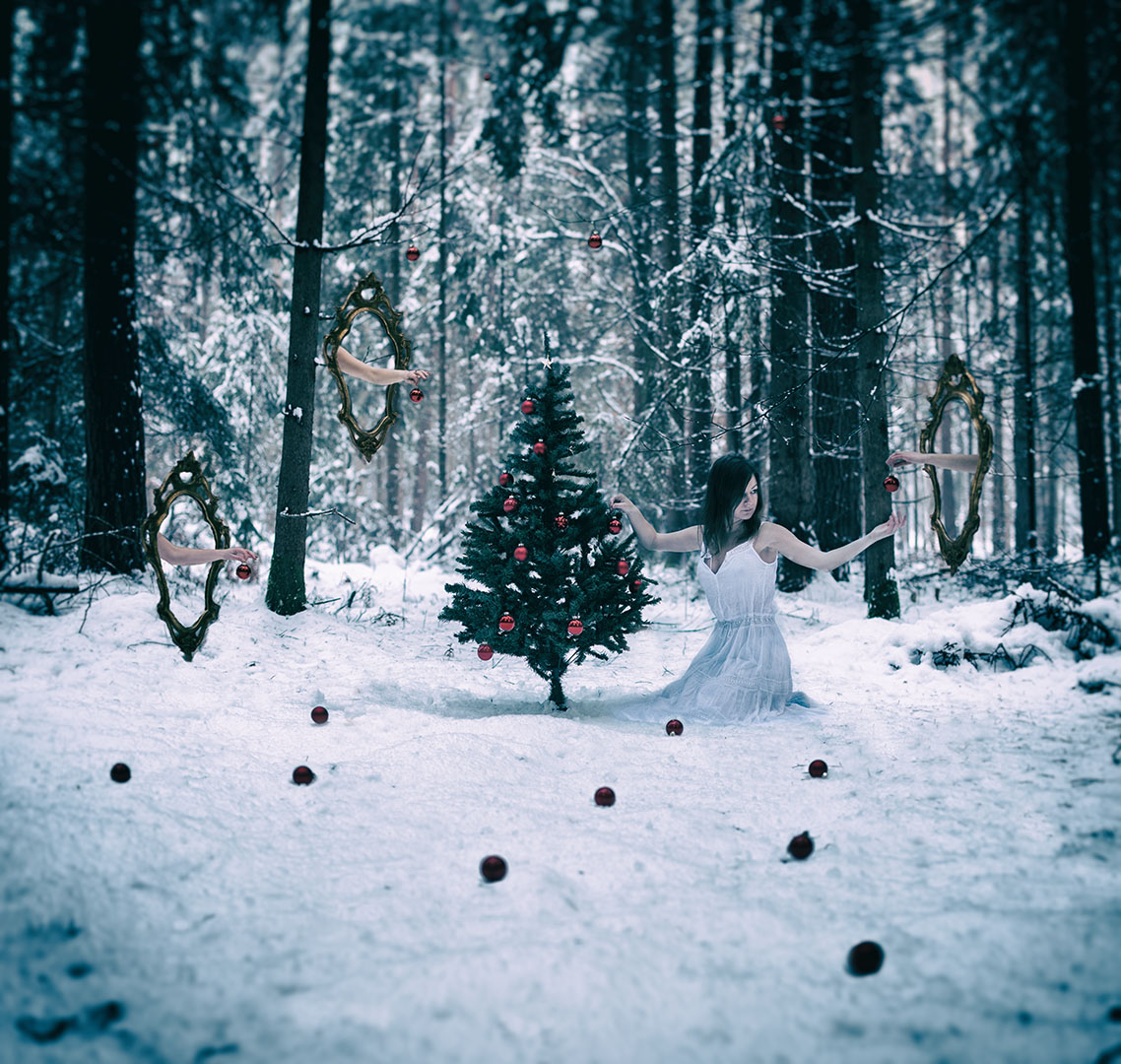 A piece of christmas in an enchanted forest...