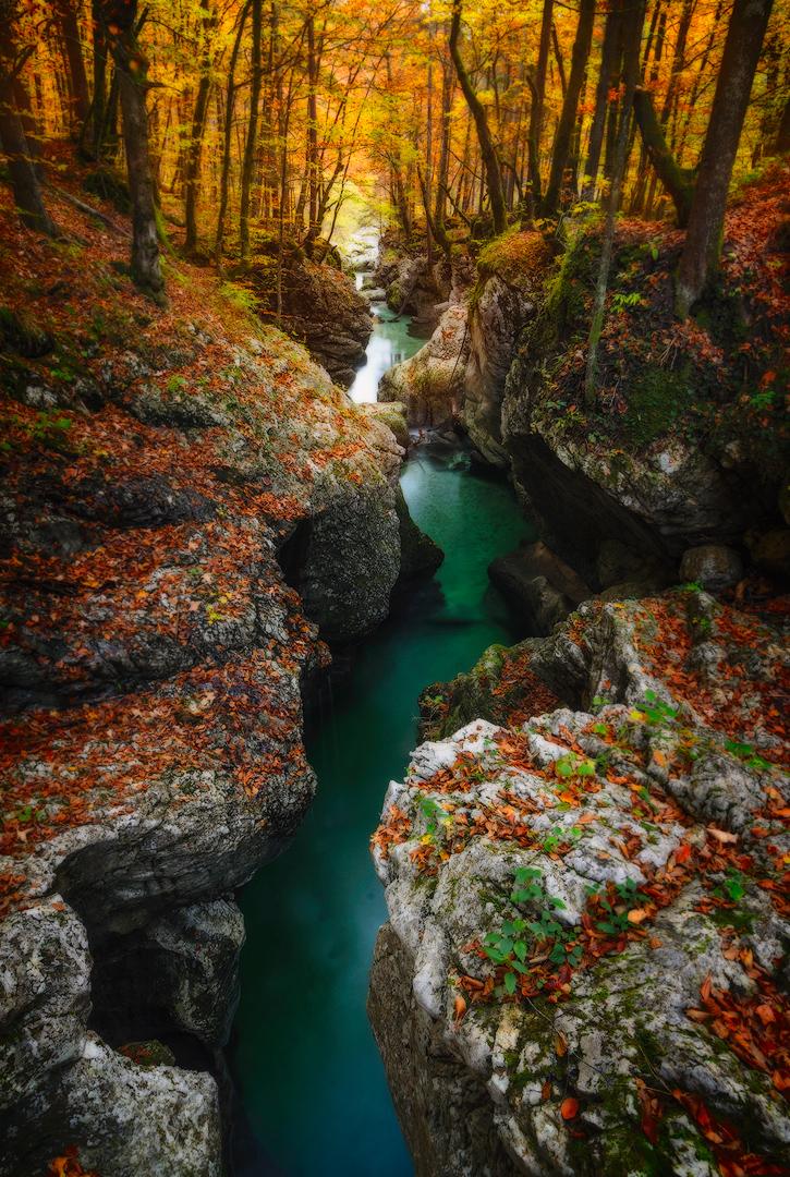 Magic Fall Colors and Light in Bohinj.