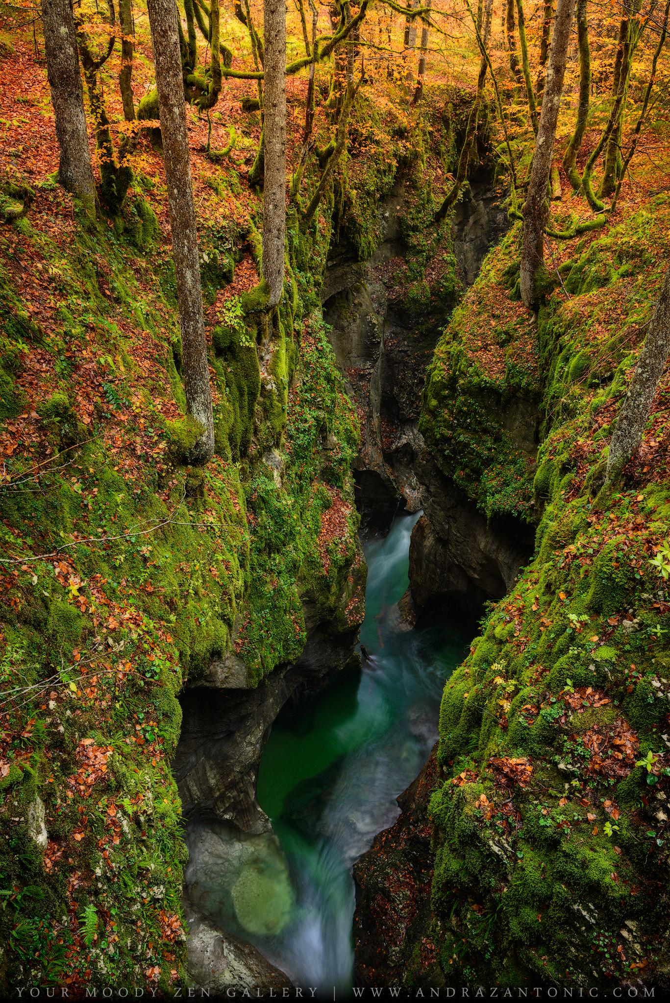 Mostnica_gorge.jpg