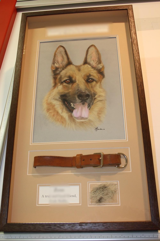 hampshire-picture-framing-framed-memorabilia-016.JPG
