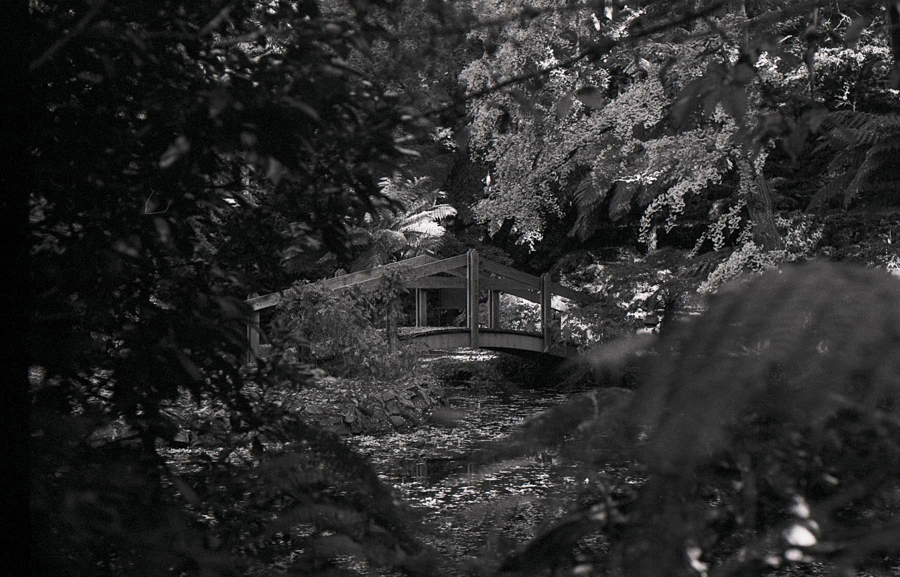 Alfred Nicholas Memorial Gardens, Sherbrooke, 2017
