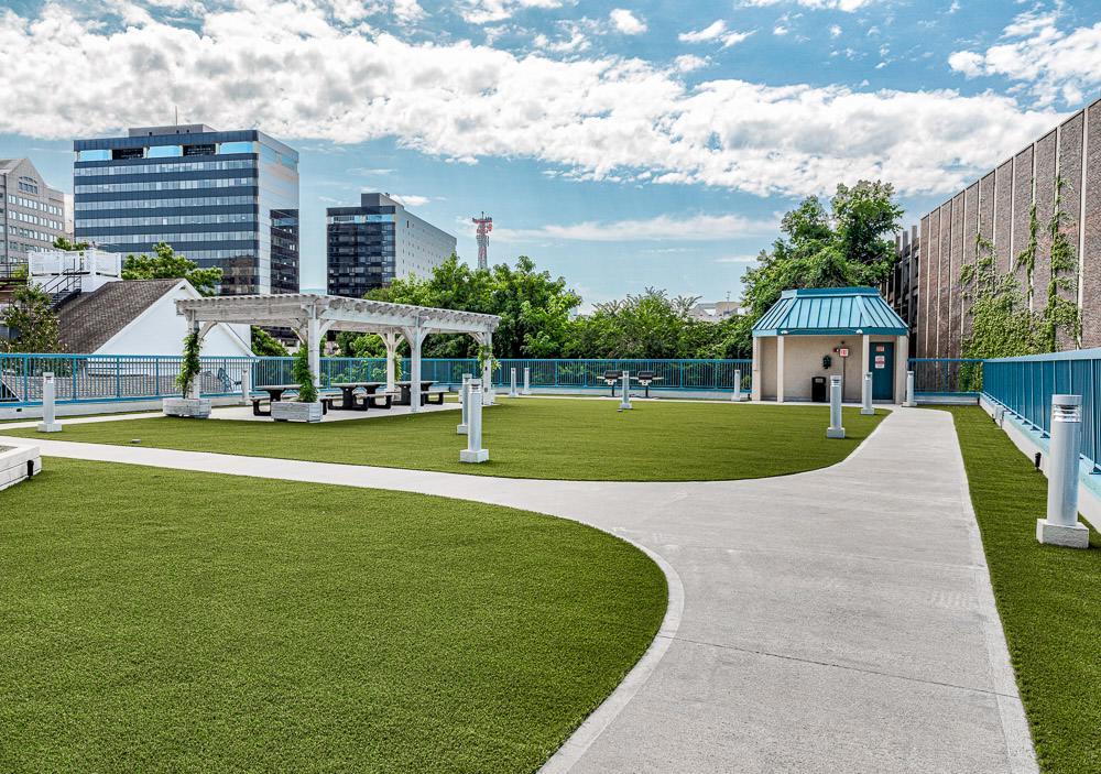Classic Dog Park.jpg