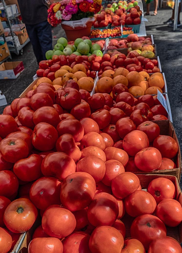 Classic Stamford Market Tomato.jpg
