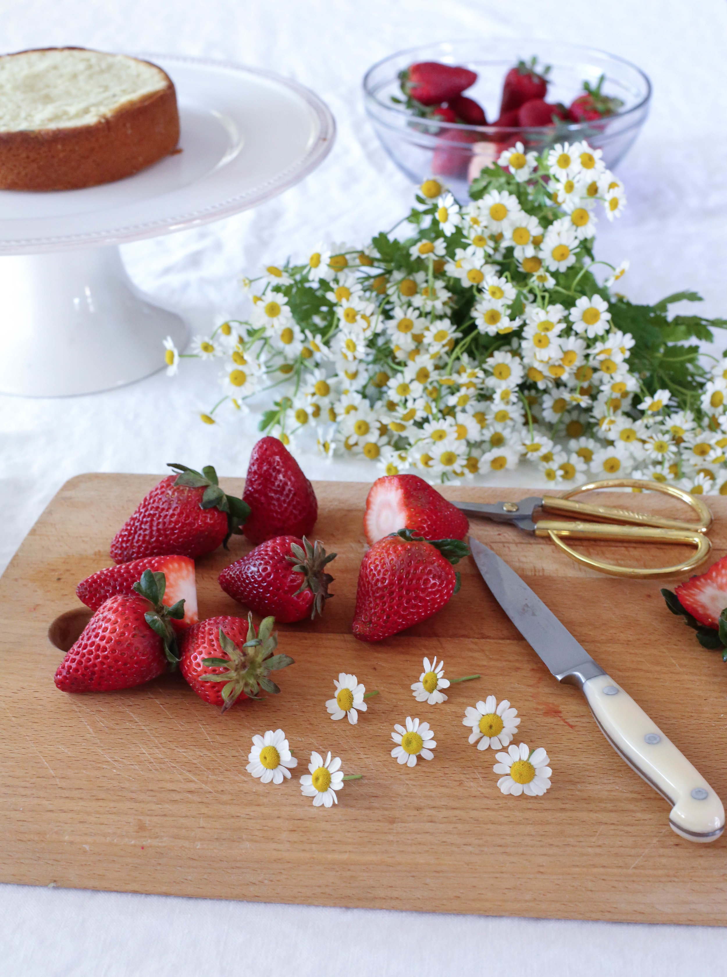 Camomile&StrawberryCake-2.jpg