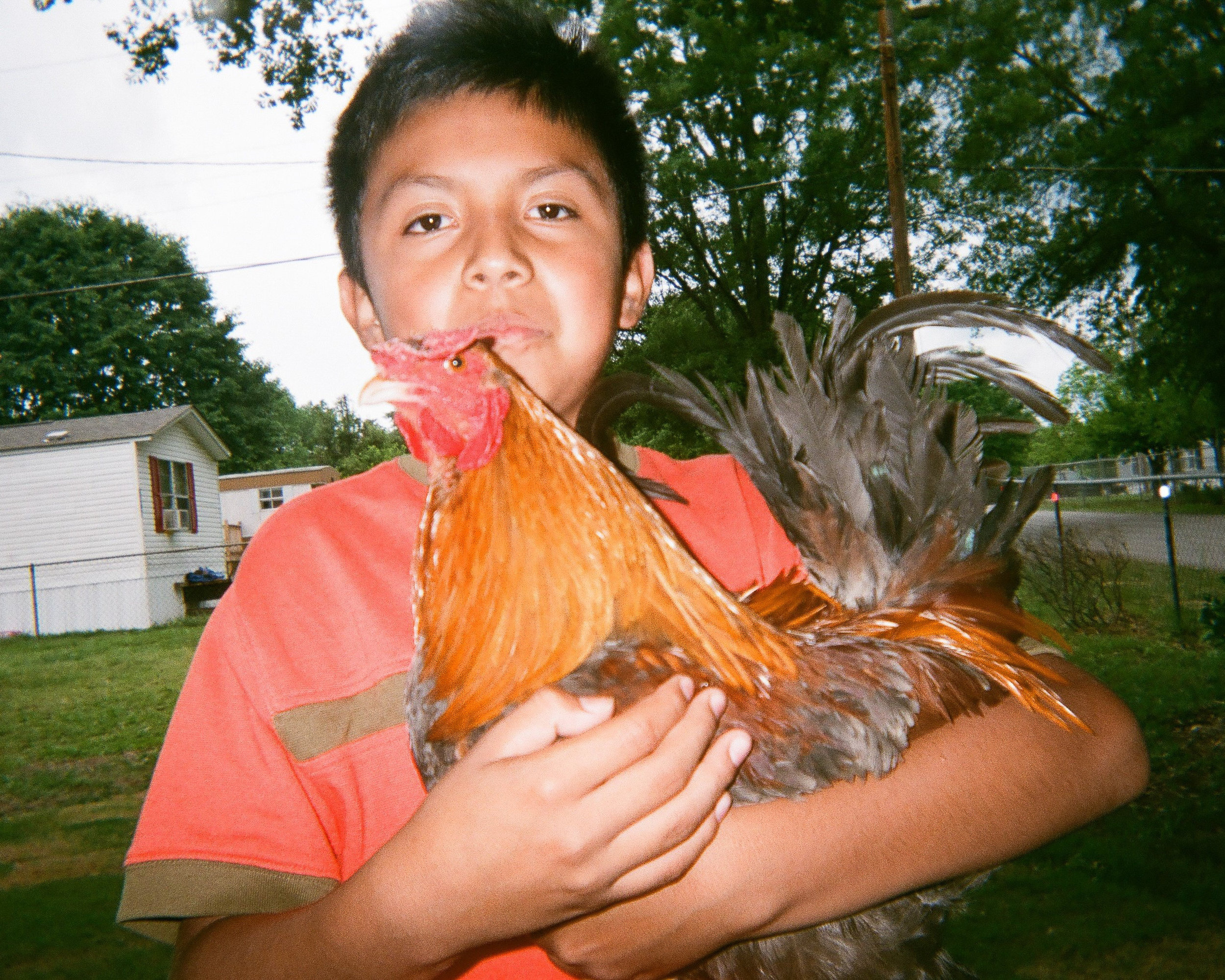 """Colorful Chicken and my Cousin  by Yuridia Ramirez-Labra   """"I thought it was cool that my cousin was holding a chicken."""""""