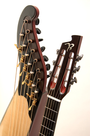 Harp Guitar — Beardsell Guitar Workshop