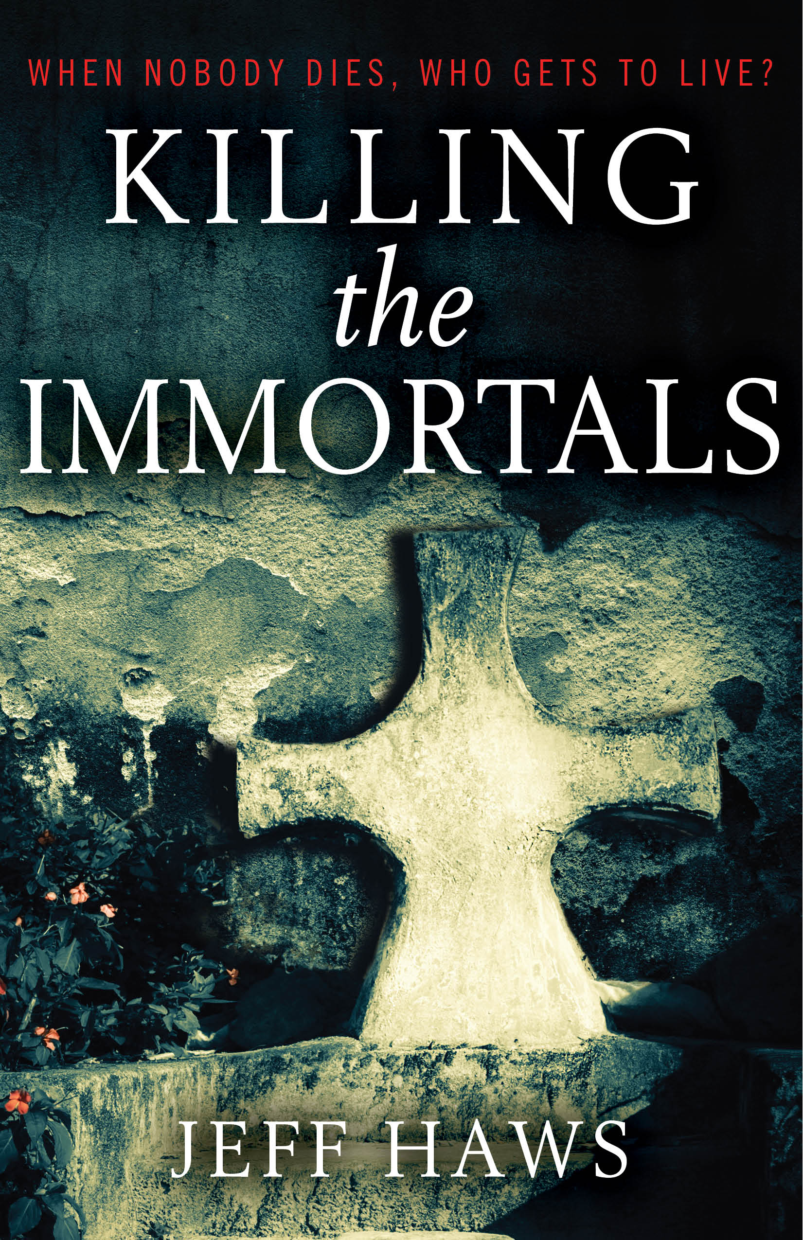 Killing the Immortals by Jeff Haws | Interview with Author Jeff Haws on the ellensmithwrites.com blog