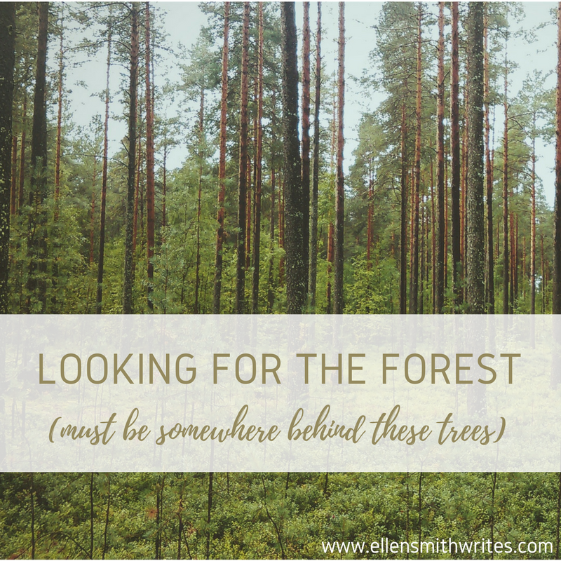 Looking for the forest (must be somewhere behind these trees) || ellensmithwrites.com