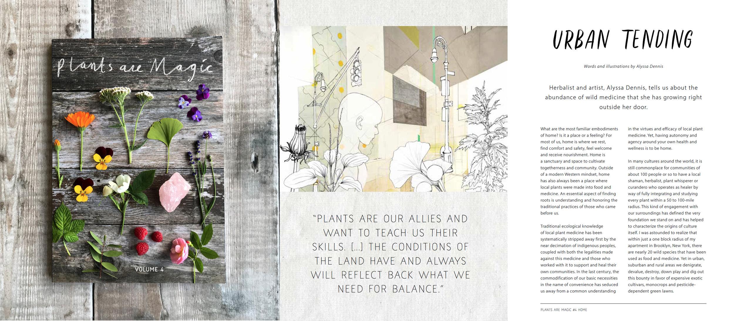 PlantsAreMagic-UrbanTending.jpeg
