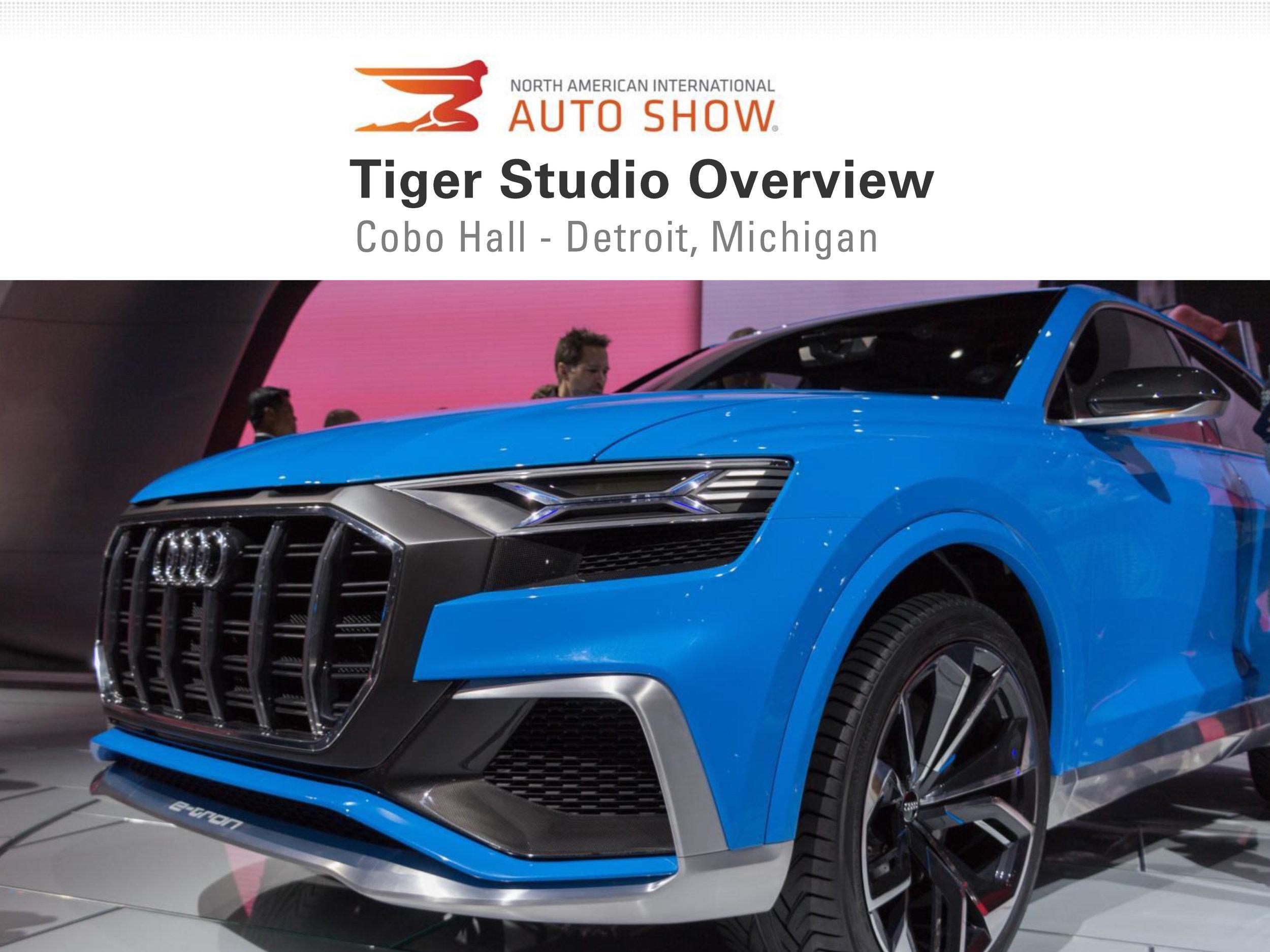 Auto Show 2017, Tiger Studio, 7 Feb (dragged).jpg
