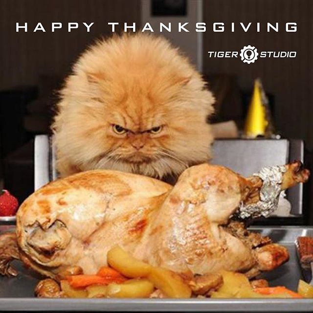 Today we thank YOU for allowing us to be your go to design company. We would like to wish you and your families a happy Thanksgiving weekend! Safe travels! From your favorite Tigers :) #thanksgiving #graphicdesign #industrialdesign #productdesign #ux #ui #design #holidays #westmichigan