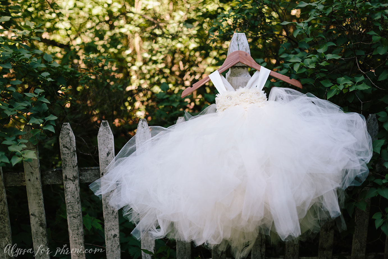Bowens_Mills_Wedding_002.jpg