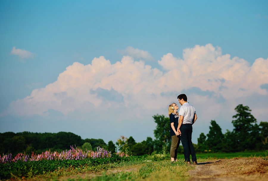 field of flowers engagement photography011.jpg