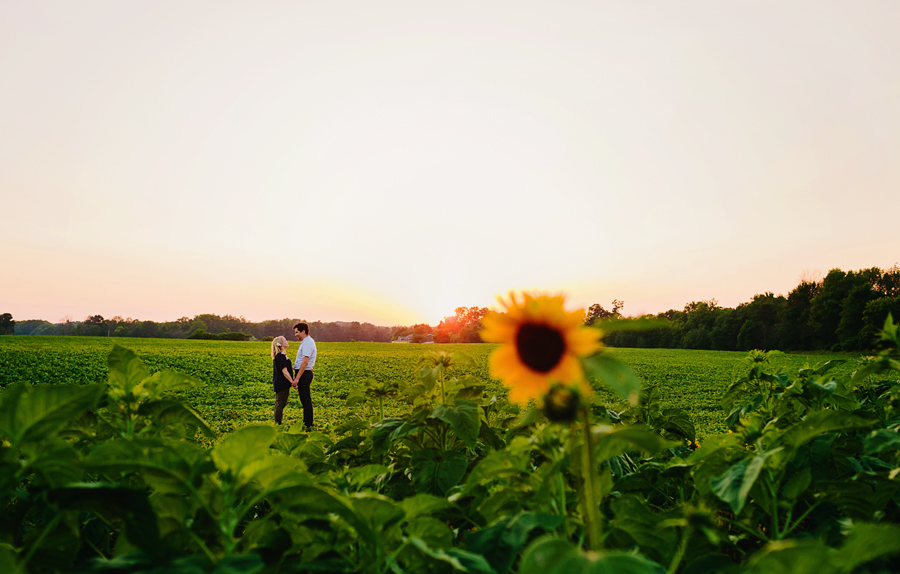 field of flowers engagement photography056.jpg