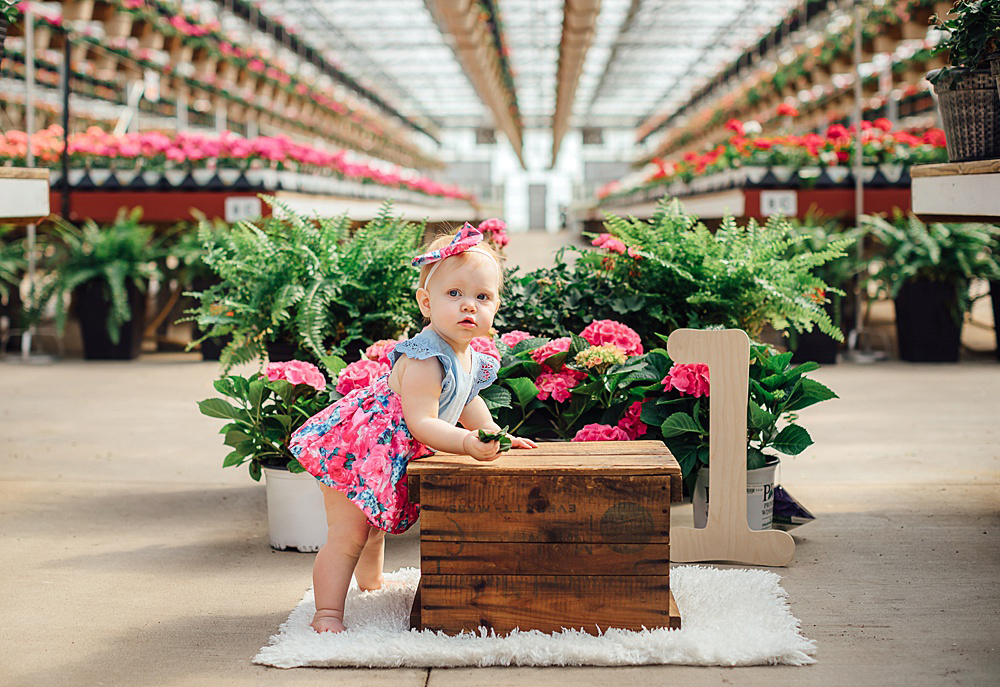 greenhouse_1yr_baby_photoshoot23.jpg