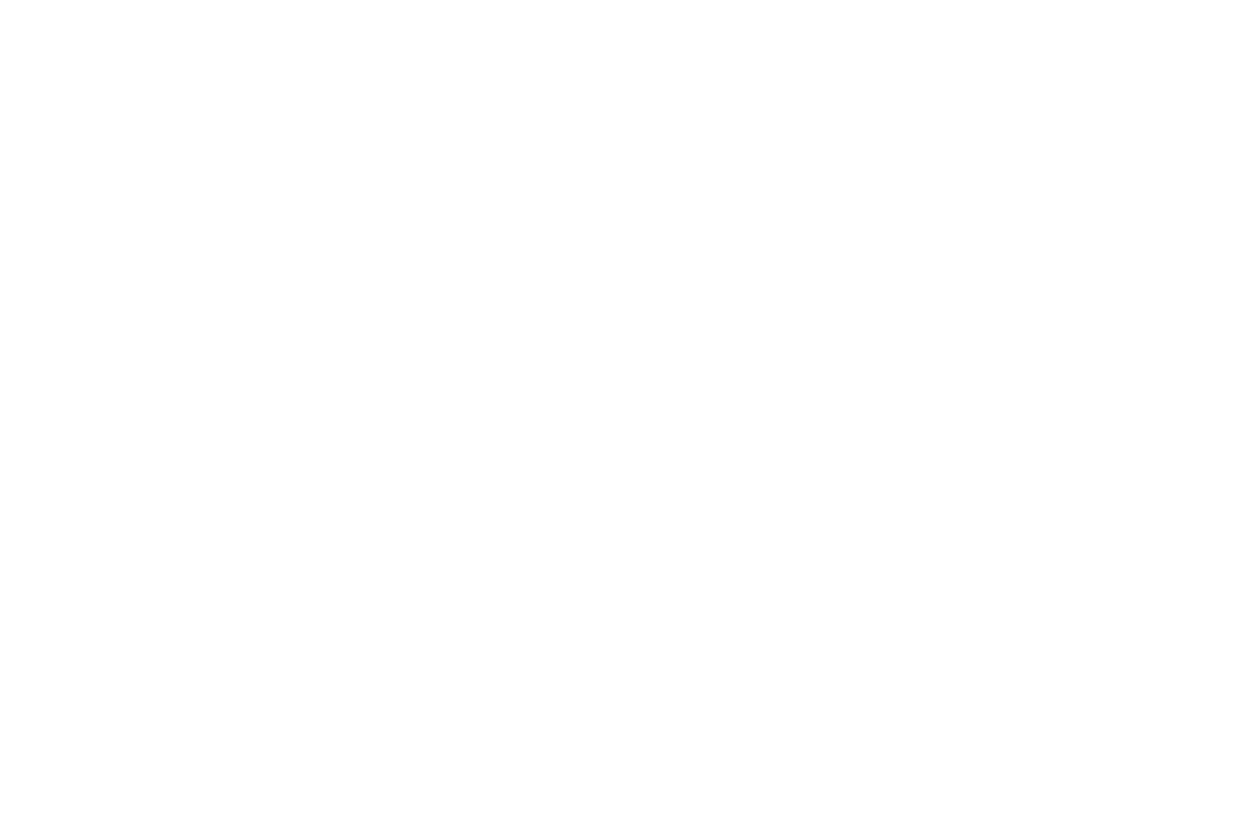 Official Selection - Circle City Film Festival - 2018 - Laurel White.png