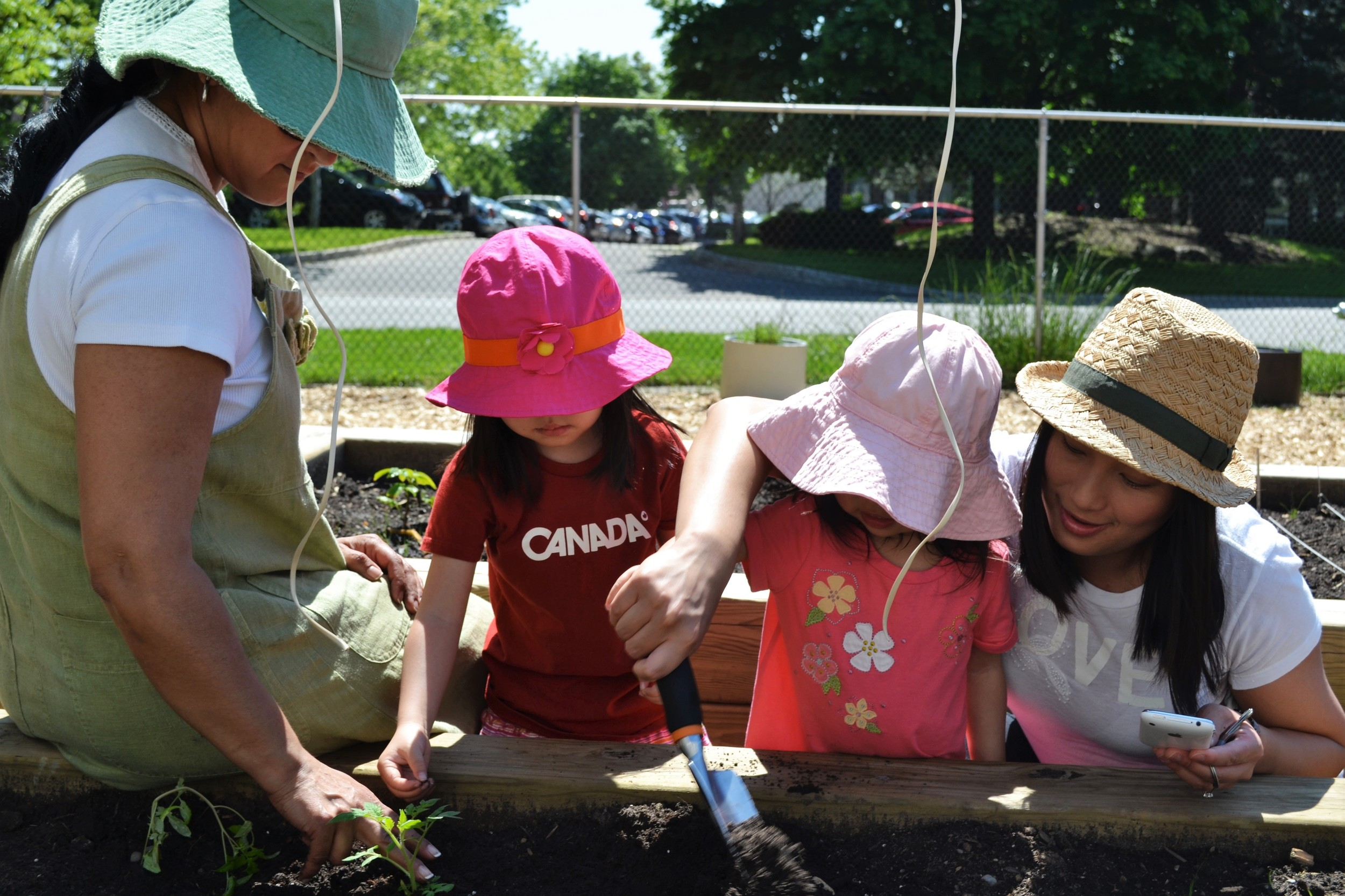 Children learning to garden