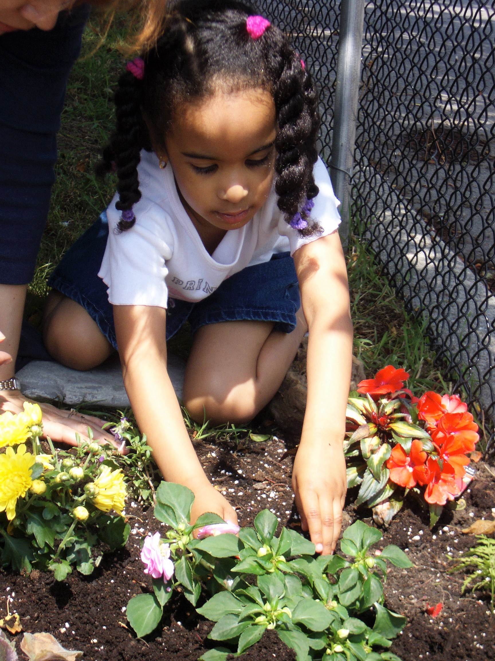 Children gardening at Kaban Montessori