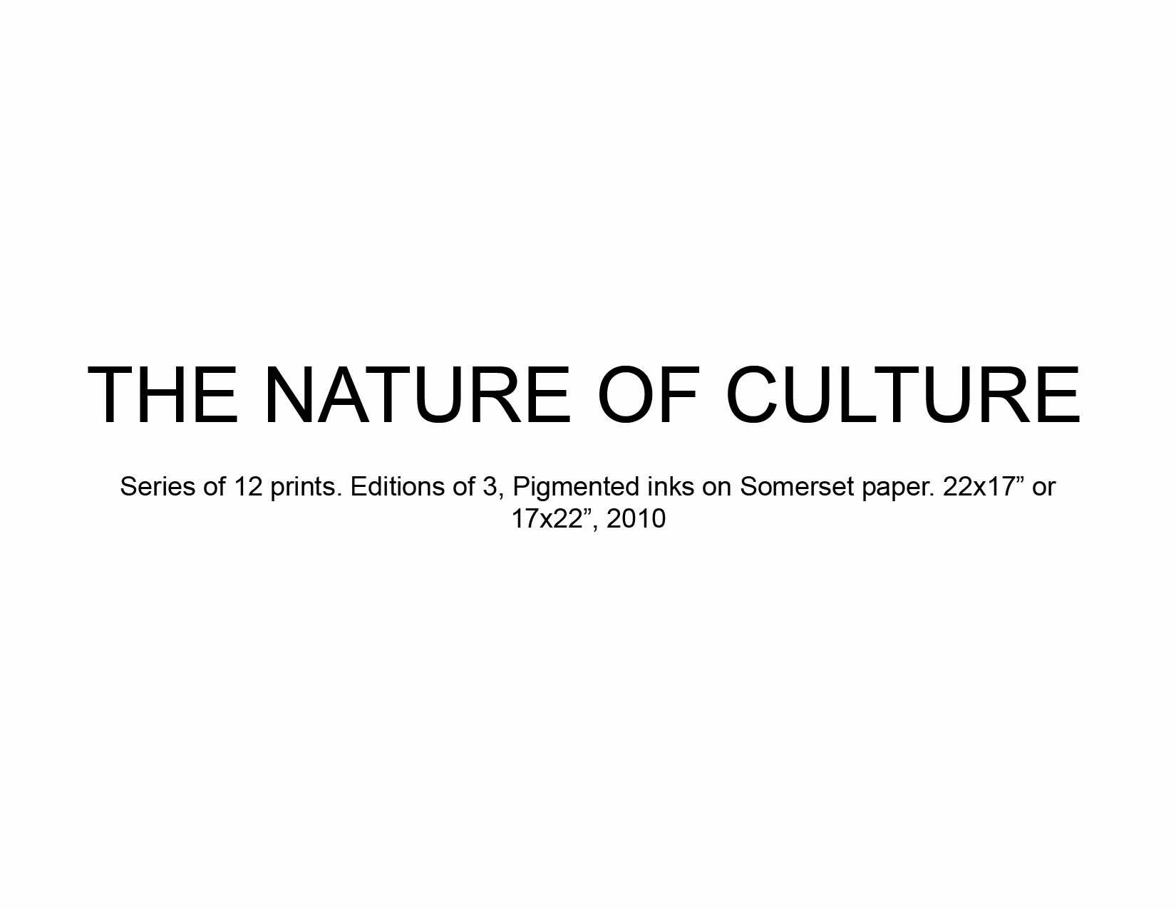04 Nature of Culture.jpg