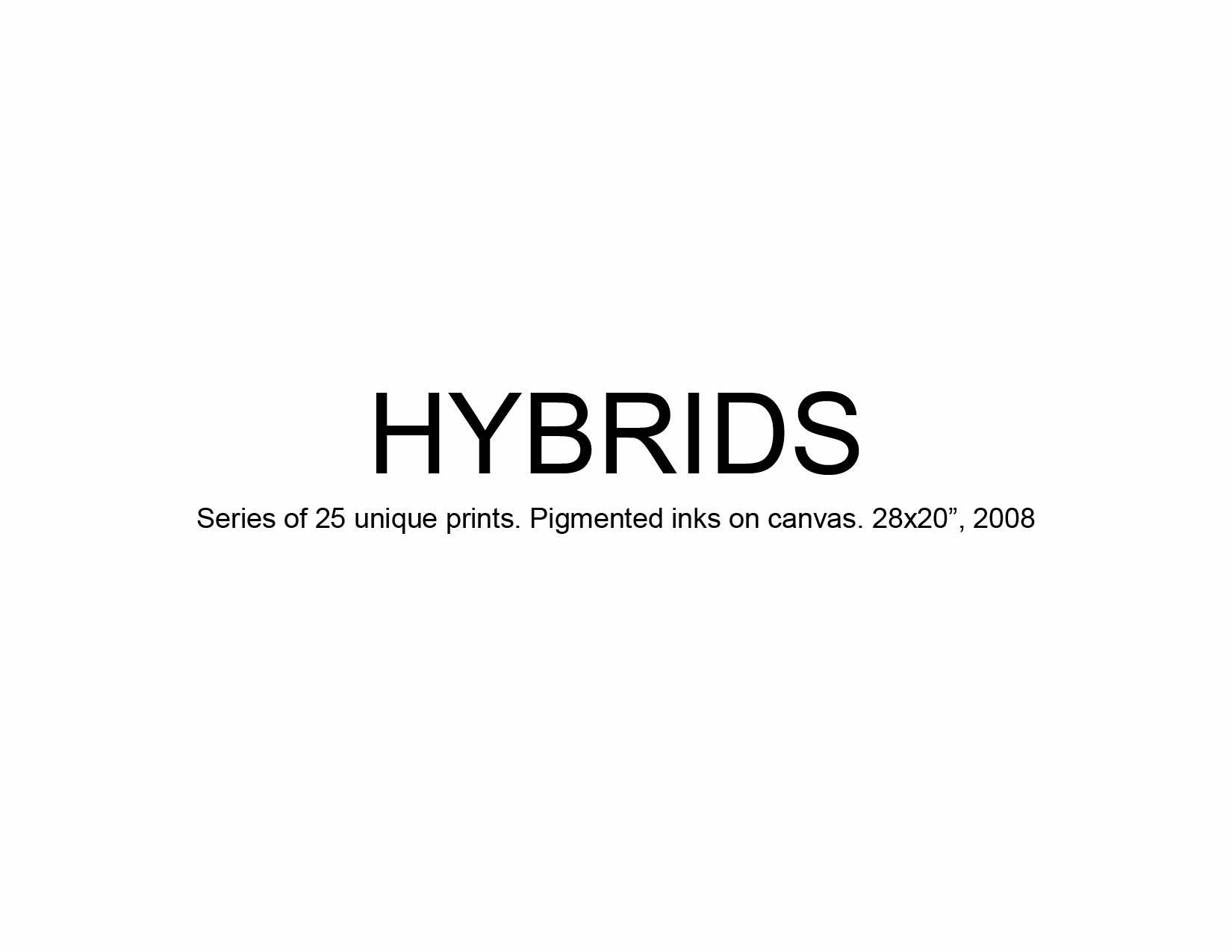 05 Hybrids.jpg