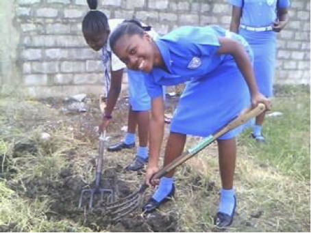 Volunteering to plant trees on high school campus in Jamaica