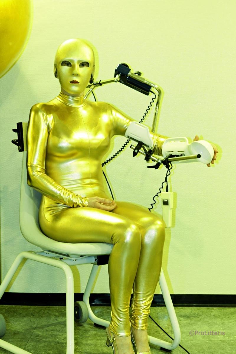 Selbstporträt in Gold, 2012 - Bild