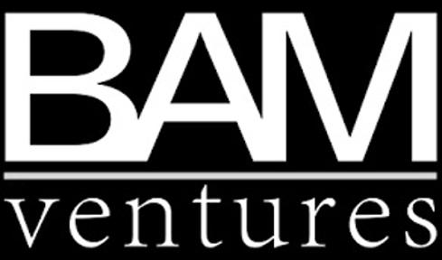 BAM Ventures.png