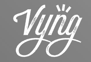 vyng logo.png