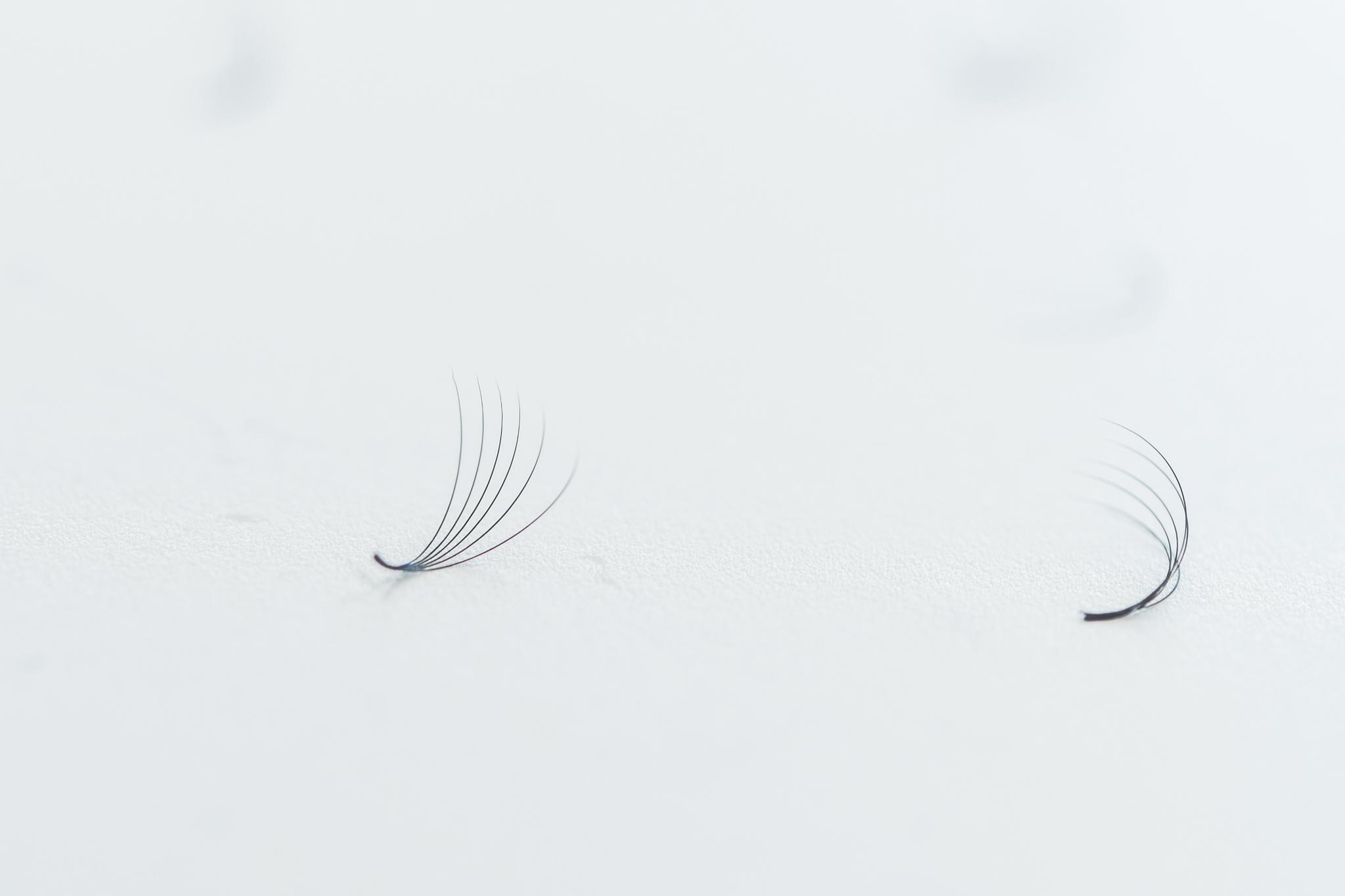 eyelandlash-97.jpg