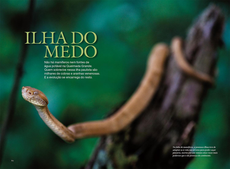 Edição de fotos e design da reportagem  A ilha do medo   NG Brasil, maio 2012. Fotos de João Marcos Rosa