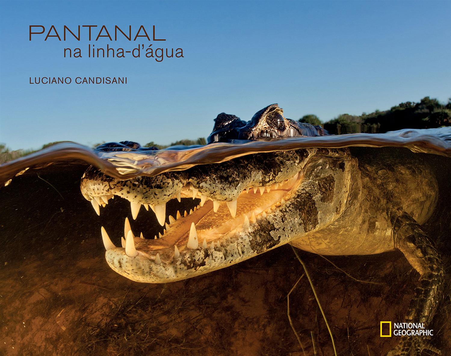 Edição de fotos e projeto gráfico para o livro  Pantanal na linha-d'-água.   NG Brasil, 2013. Fotos de Luciano Candisani
