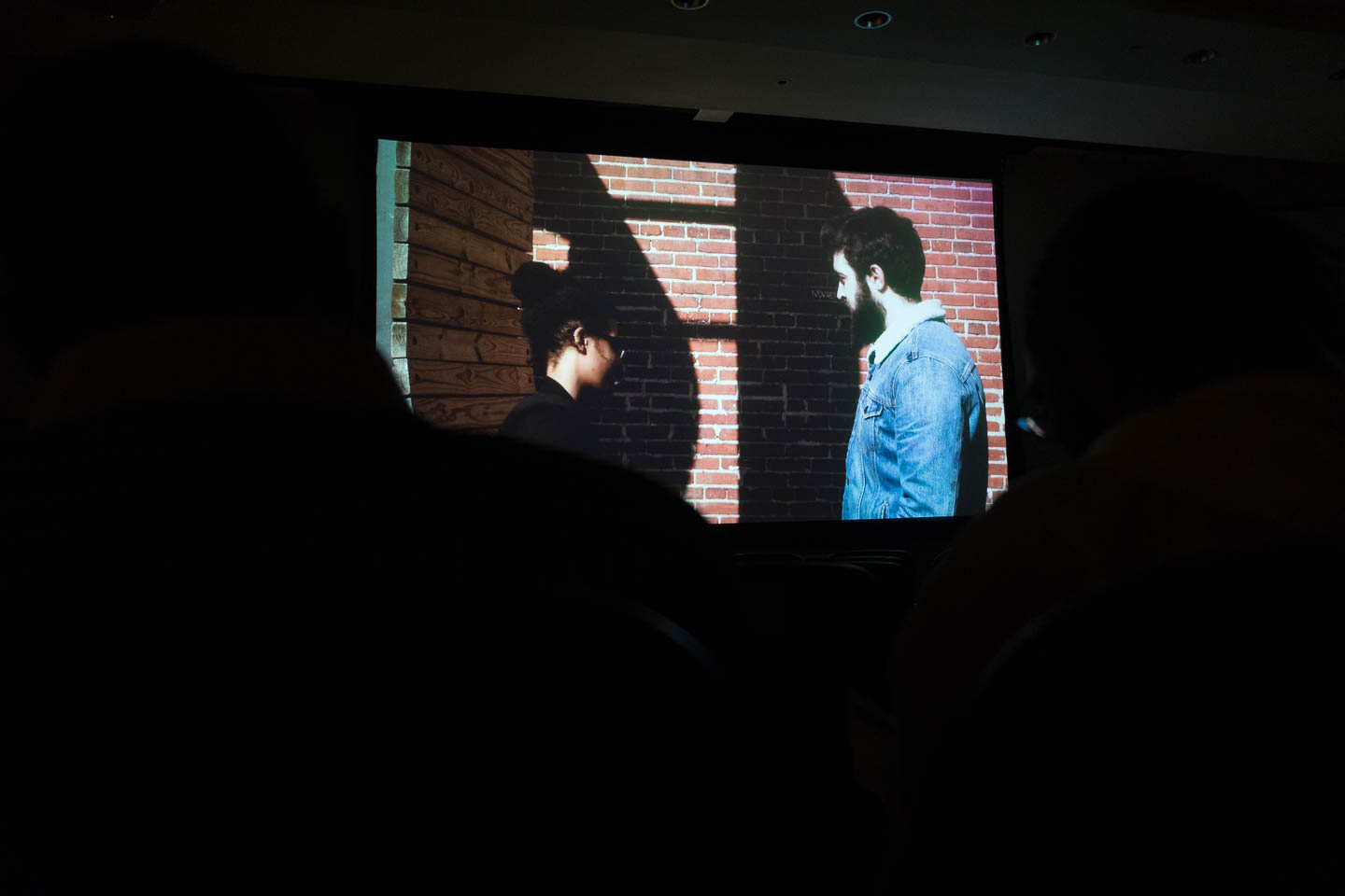 Final Screening and Exhibition, Spring 2017
