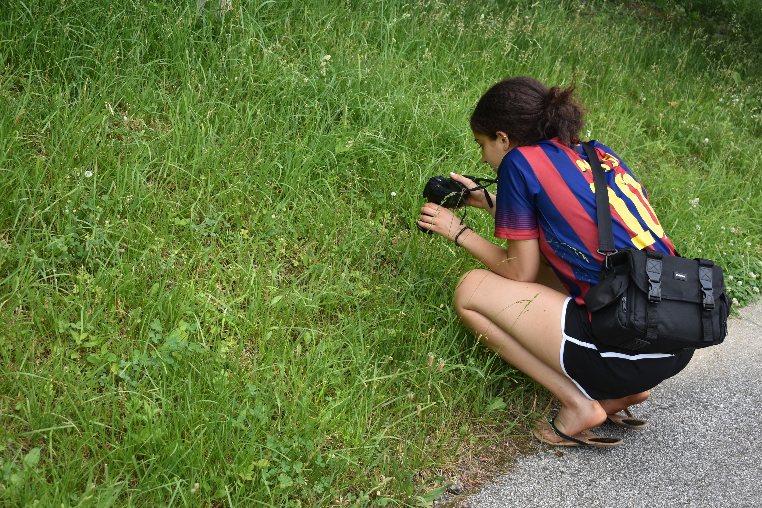 Investigating Our Natural Landscape Through Photography