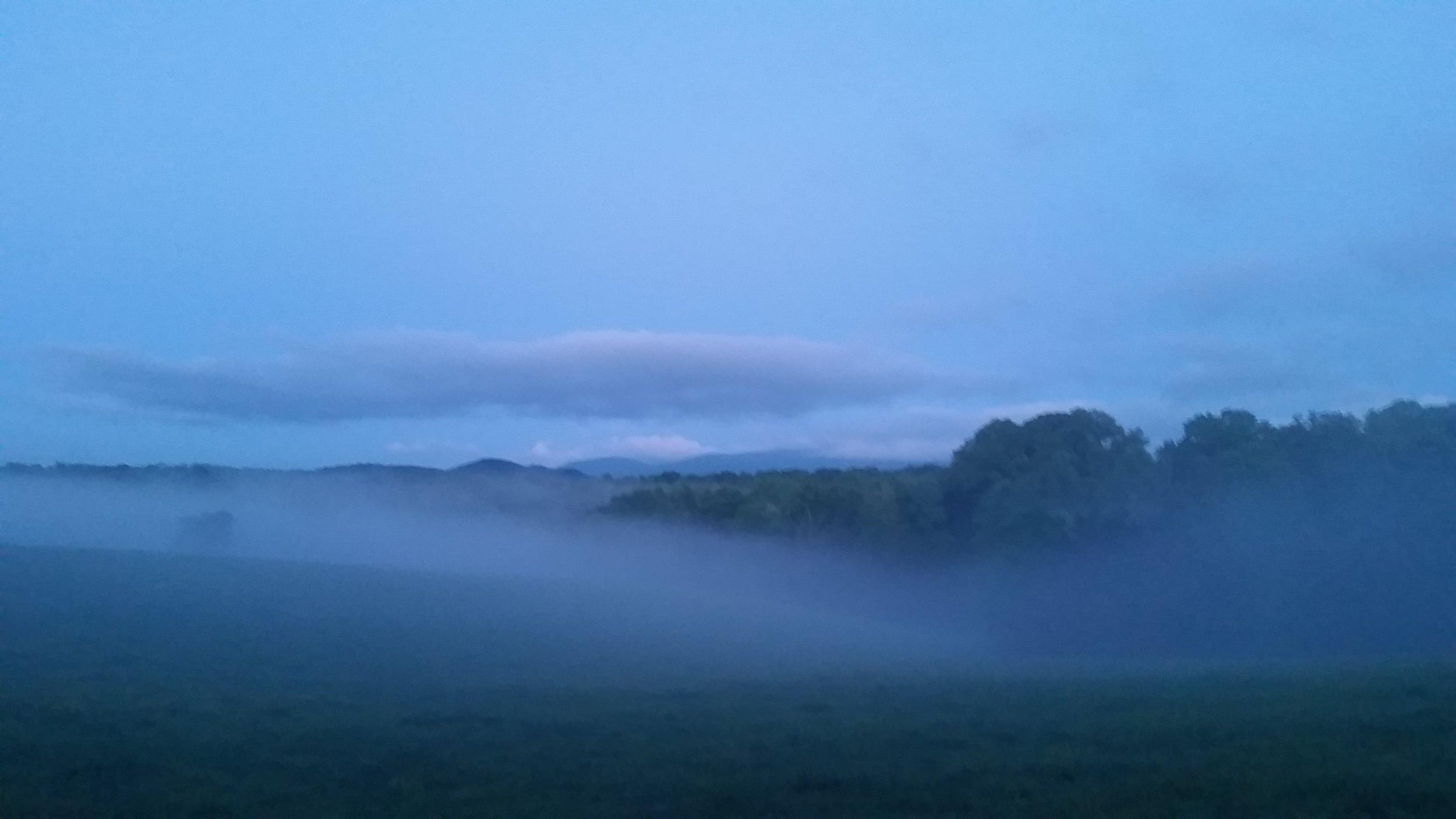 foggy may morning